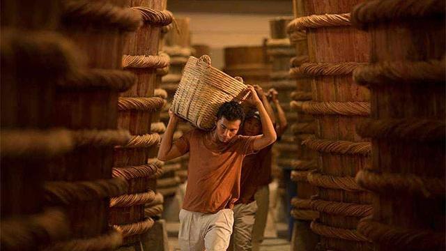 越南富國魚露製作業被列入國家級非物質文化遺產名錄